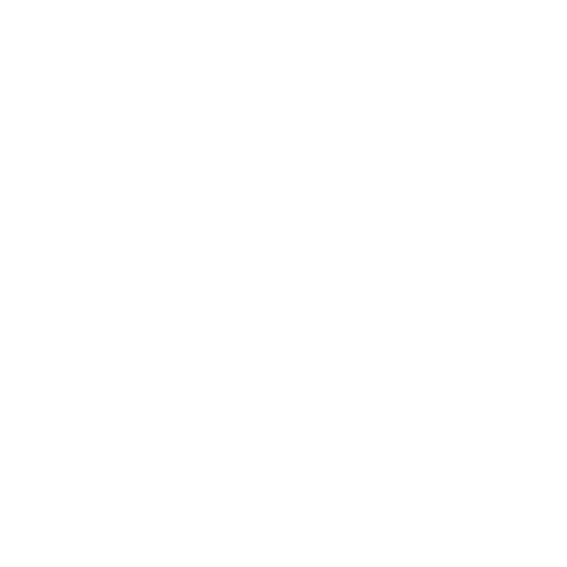 Flecha Siguiente
