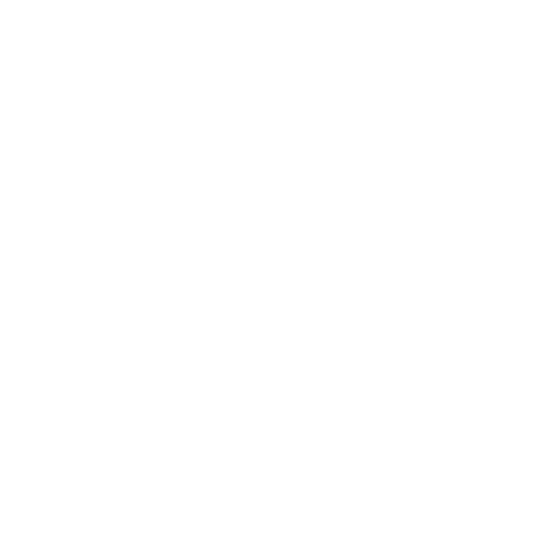 Flecha Anterior